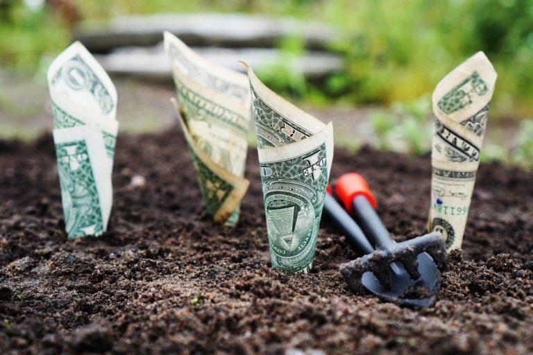 Jak zacząć inwestować? Inwestowanie małych kwot